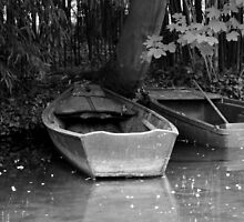 Monet's boats by Christine Oakley