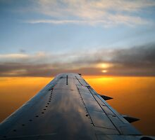 Wing Sunset 4 by Nate Forman
