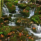 MOUNTAIN STREAM by Chuck Wickham