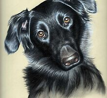 Paula - Dog Portrait Mixed Race by Nicole Zeug