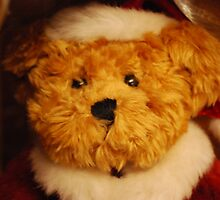 The Christmas Bear by Claire Elford