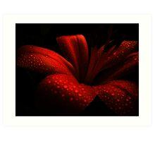 Ruby. Art Print