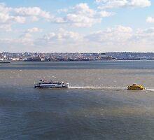 New York Harbor by Dandelion Dilluvio