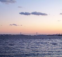 Sunset at the Brooklyn Bridge by Dandelion Dilluvio