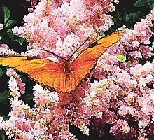 Julia Butterfly on Pink Flowers by Susan Savad