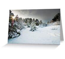 Lost On a Winter's Day Greeting Card