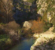 Valle dell'Anapo by Andrea Rapisarda