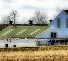 Amish Clothes Dryer by Polly Peacock