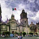México DF. Catedral Metropolitana. by josemazcona