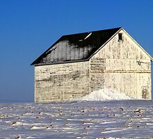 Blue Sky and White Barn by Brian Gaynor