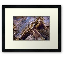 Nature's Art Canvas Framed Print