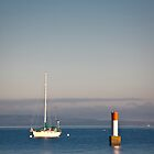 Sailboat in the Harbor by Rick Ruppenthal