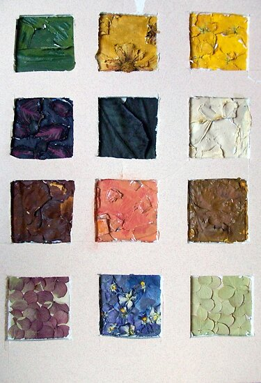 Dried Flower Color Board by Michelle Side