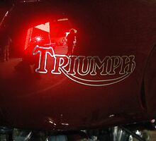 Triumph - NSW by CasPhotography