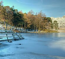 Blea Tarn in January by Jamie  Green
