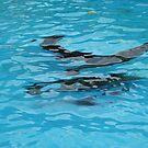 Under water: swimming by Marjolein Katsma