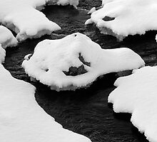 Nature's Rorschach by PigleT