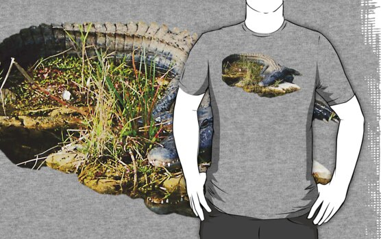 American Alligator by TravlynWomyn