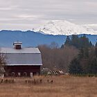 Granite Falls Barn by Barb White