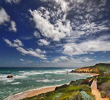 Sorrento Back Beach by Peter Hammer