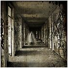Roaming the Halls by Steph Enbom