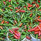 Hot Cuban Chillies by apricotargante