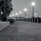 Waterfront Park Black and White Night by Peter Van Egmond