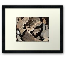 native American,Creek tribe,potsherds,ancient,Florida, Framed Print