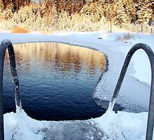 Ready For A Dip? by Ritva Ikonen