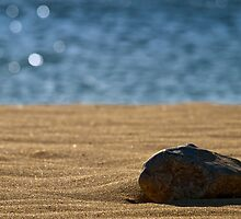 Stoned (Again) at the Beach by PhotoWorks