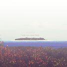 An Islander's Postcard by JenniferElysse