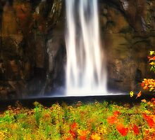 New York's Taughannock falls VIII by PJS15204