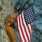 010510-4  ONE PATRIOTIC SQUIRREL by MICKSPIXPHOTOS
