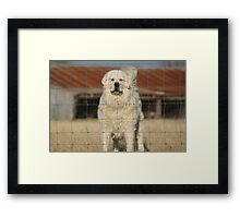 Not On My Watch! Framed Print