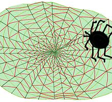 The Spider and the Web by KazM