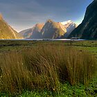 Milford Sound morning by Mark  Attwooll