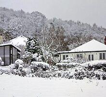 Home by missmoneypenny