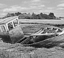 Derelict Wooden Boat in the Salt Marshes by johnny2sheds