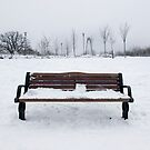 Cold Bench by cas slater