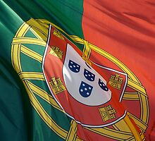 Flag of Portugal by portokalis