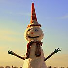 Conehead the Snowman by Stan Owen
