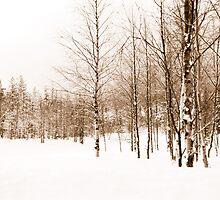 Whiteout by LonePilgrim