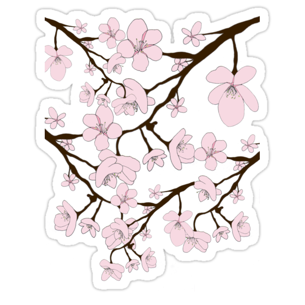 Sakura Blossoms by Louise Norman