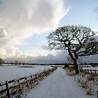 A winters trail by Jan Szymczuk