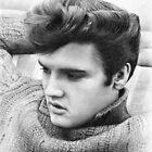 Elvis by Nori Bucci