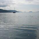 An Orcas Island Harbor on a Calm Fall Day by rferrisx
