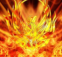 Flames of renewal by John Edwards
