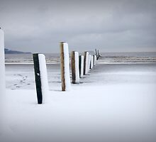 Beach whiteout by Christopher  Rees