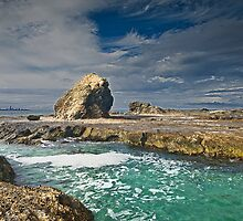 Currumbin on the Rocks by GayeL Art