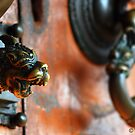 door knob by wasantha
